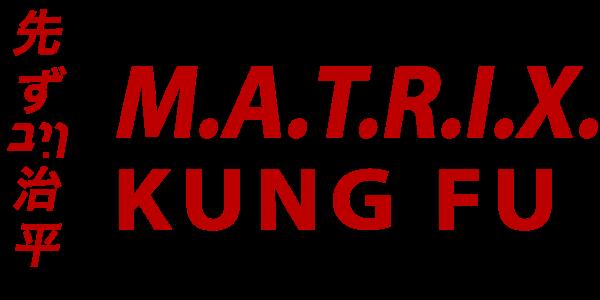 matrix-kung-fu-course